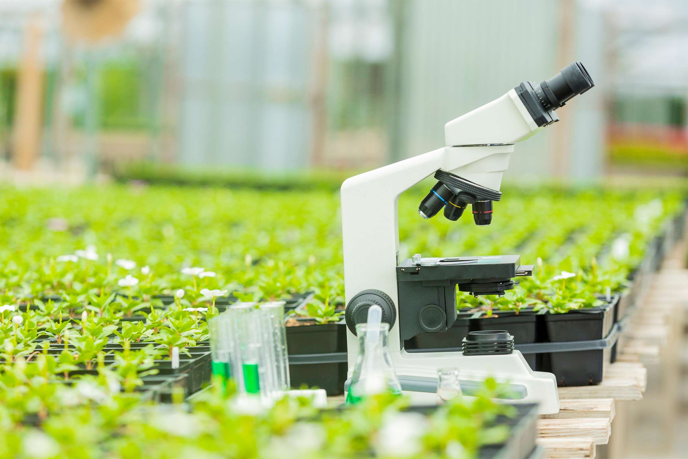 Agriculture_Research