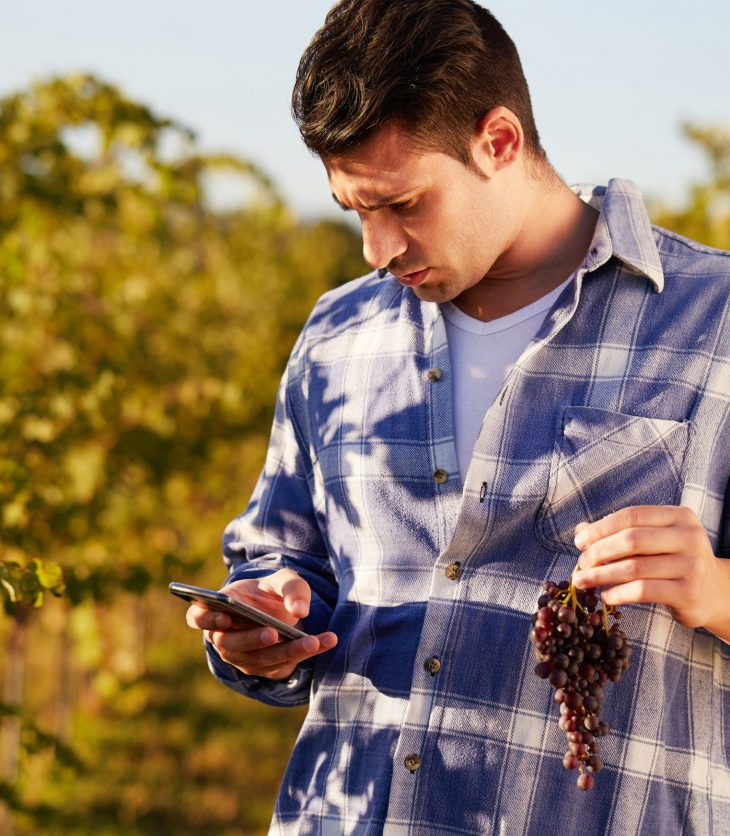 Viticulture-technology-CSU
