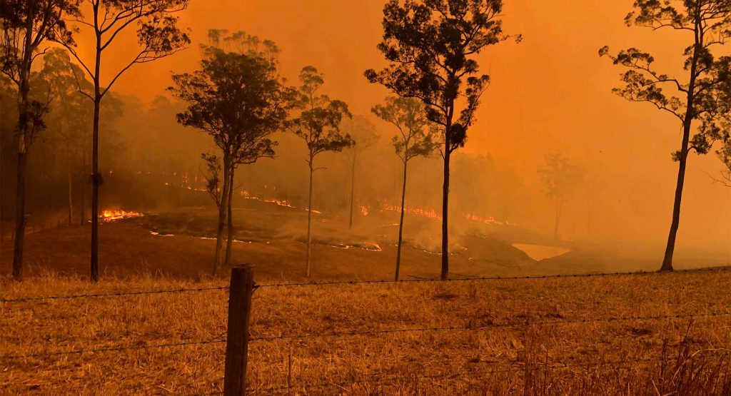 Farmland burning